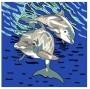 Delfínci