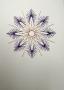 Hvězdička fialovo-perleťová