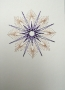 Hvězdička perleťovo-fialová