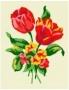 Kytice-tulipány
